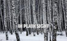 Hidden-Blog